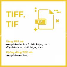 Định dạng hình ảnh TIFF