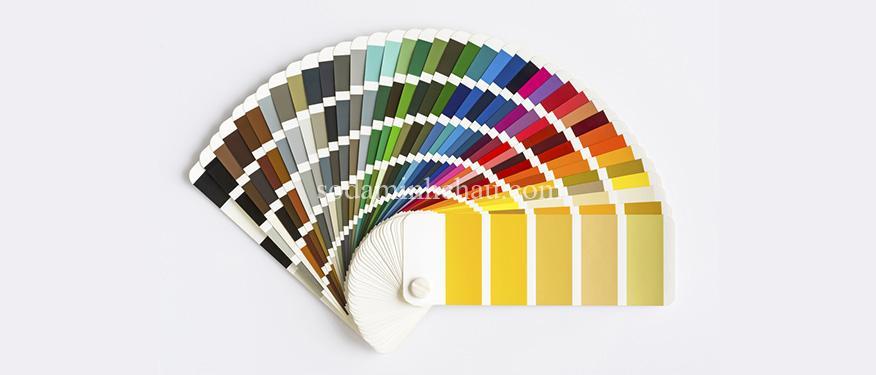 thuat-ngu-in-an-pantone-colour