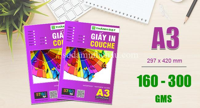 Các loại giấy in - giấy couche