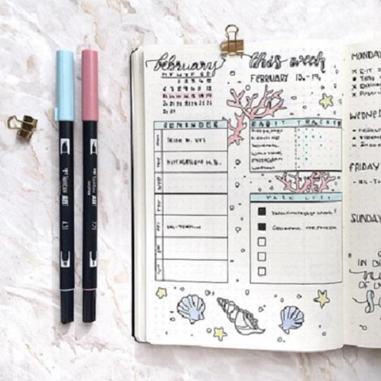 Trang trí sổ Bullet Journal bằng bút lông nhiều màu